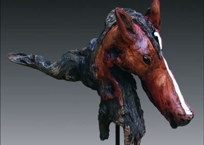 stallion-cameo