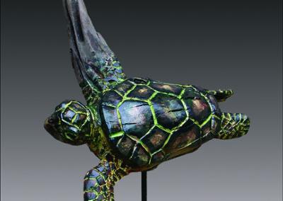 turtle-love